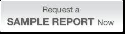 sample_report